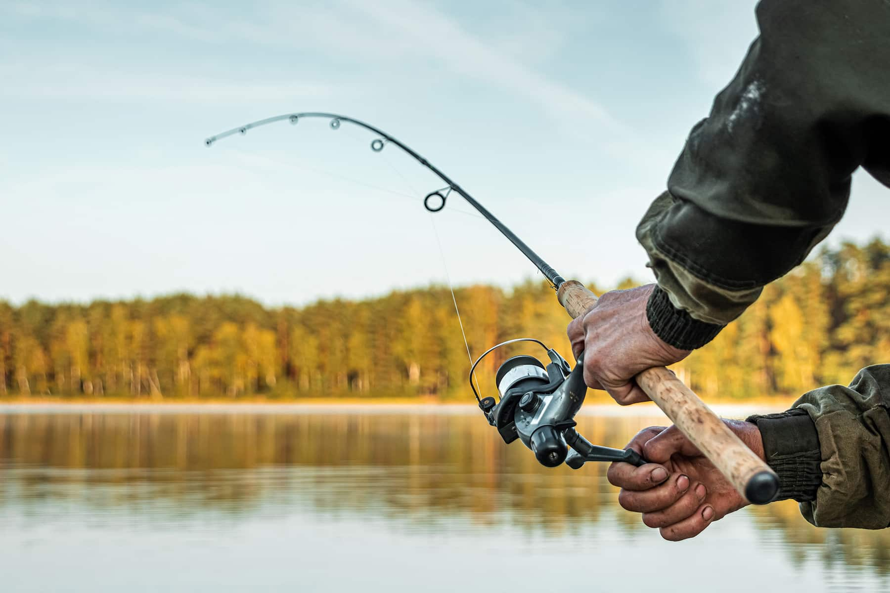 This is the cover photo for our Best Fluorocarbon fishing line article. It features a man fishing on a lake with a forest in the backdrop.